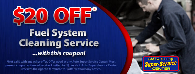 Fuel System Cleaning Service