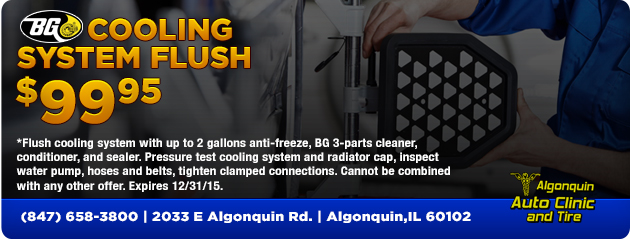 BG Cooling System Flush $99.95