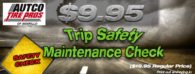 $9.95 Trip Safety Maintenance Check