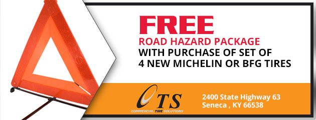 Free road hazard package with purchase of set of 4 new MICHELIN or BFG tires