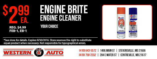 Engine Brite  Your Choice $2.99 ea