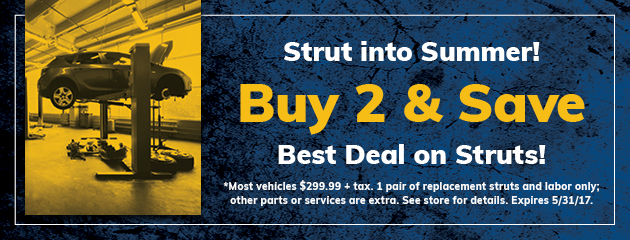 Buy 2 and Save On Struts