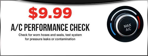 A/C Performance Check- $9.99