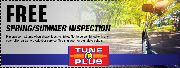 Free Spring/Summer Inspection