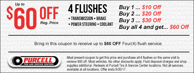 Receive up to $60 OFF Four(4) flush services