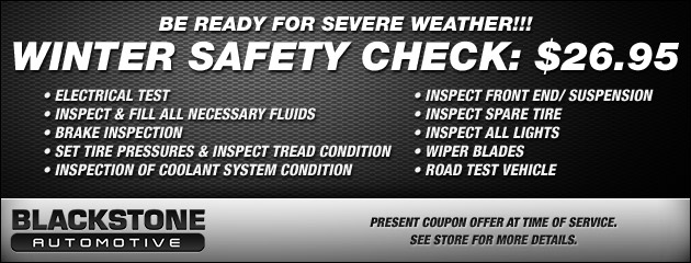 WINTER SAFETY CHECK: $24.95