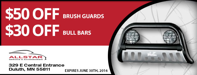 Brush Guards and Bull Bars Special