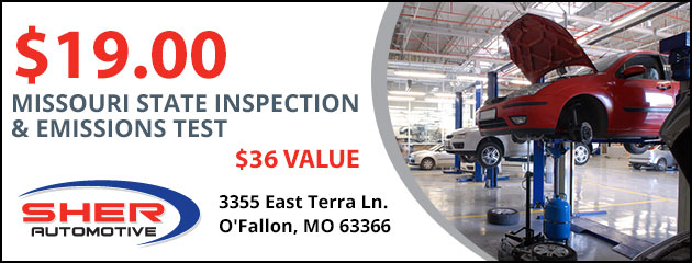 $19 Inspection