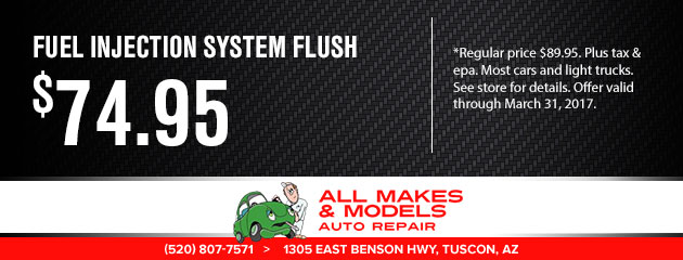 fuel injection system service $74.95
