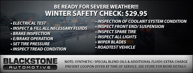 WINTER SAFETY CHECK: $29.95