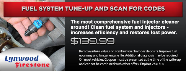 Fuel System Tune-Up And Scan For Codes