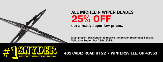 25% off Michelin Wiper Blades