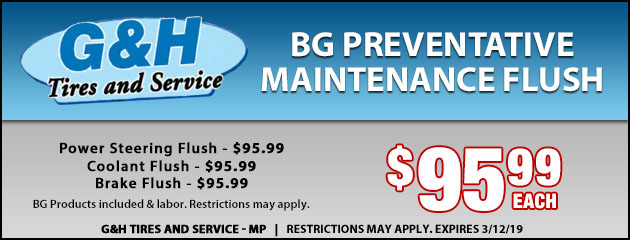 BG Preventative Maintenance Flush
