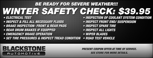 WINTER SAFETY CHECK: $39.95
