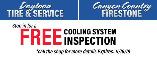 free cooling system inspection