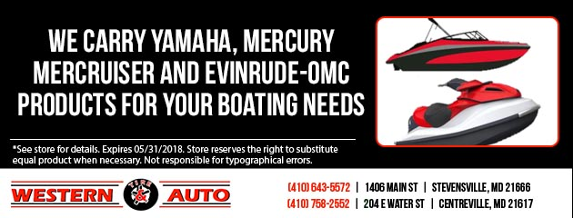 We Carry Yamaha, Mercury Mercruiser and Evinrude-OMC products for your boating needs