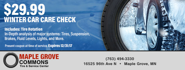 WInter Car Care Check