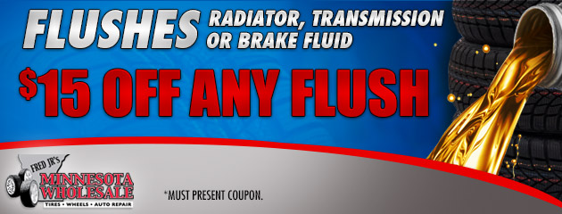 $15 Off Any Flush Service