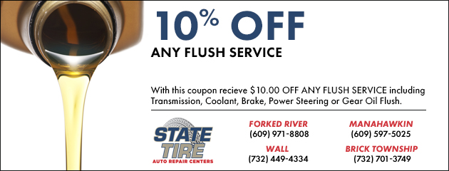 10% OFF Any Flush Service