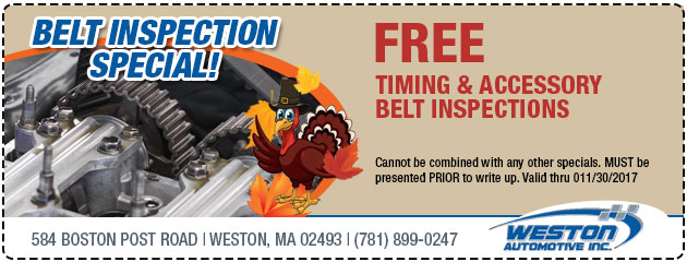 FREE Timing & Accessory Belt Inspection