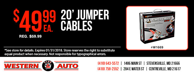 20' Jumper Cables Special