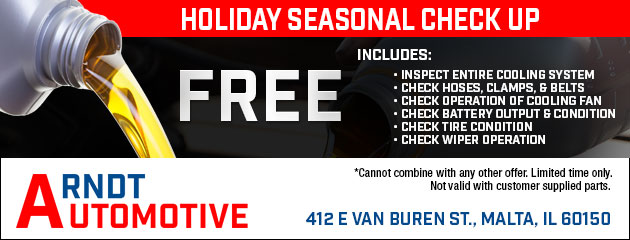 Free Holiday Seasonal Check Up
