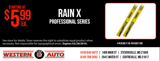 RainX Wiper Special