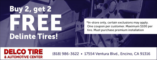 Buy 2 Get 2 FREE Delinte Tires