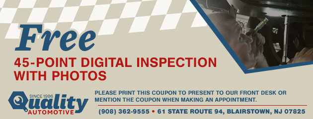 Free 45 Point Digital Inspection with photos