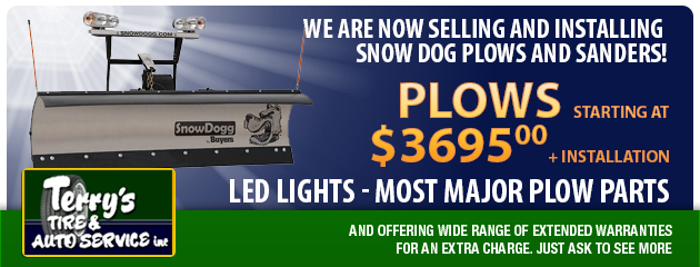 Now selling Snow Dog!